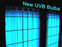 narrowband uvb 0810b